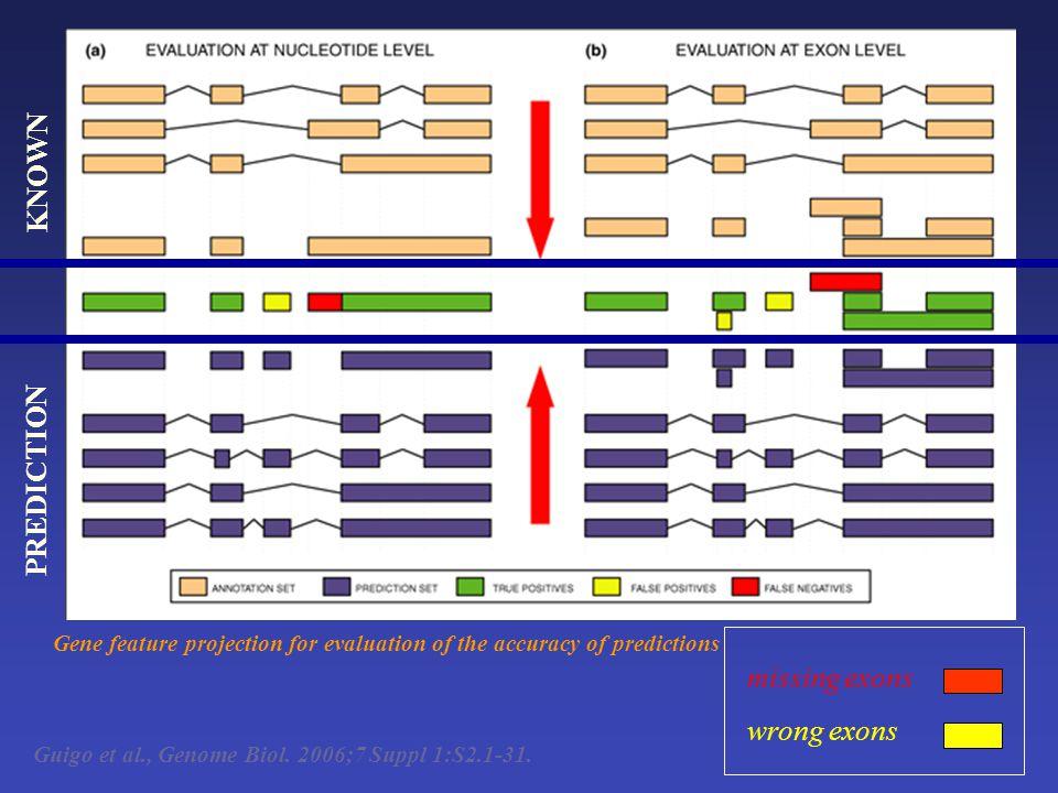 Guigo et al., Genome Biol. 2006;7 Suppl 1:S2.1-31.