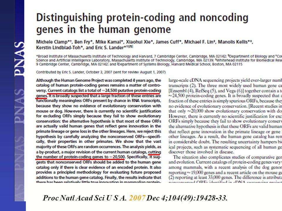 Proc Natl Acad Sci U S A. 2007 Dec 4;104(49):19428-33.