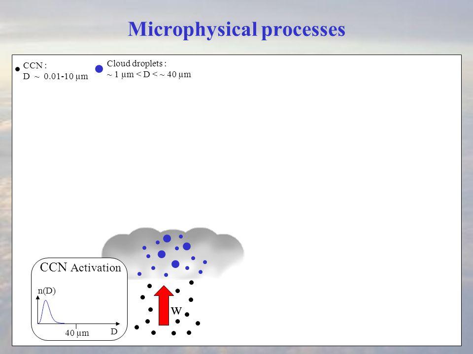 Microphysical processes Condensation Rain drops ~ 40 µm <D < 100-500 µm Cloud droplet sedimentation CCN : D ~ 0.01-10 µm D 40 µm D n(D) Mixing D 40 µm n(D) Collection D 40 µm n(D) ECS Cloud droplets : ~ 1 µm < D < ~ 40 µm precipitation embryo D ~ 40 µm CCN Activation Rain sedimentation  size sorting Rain evaporation