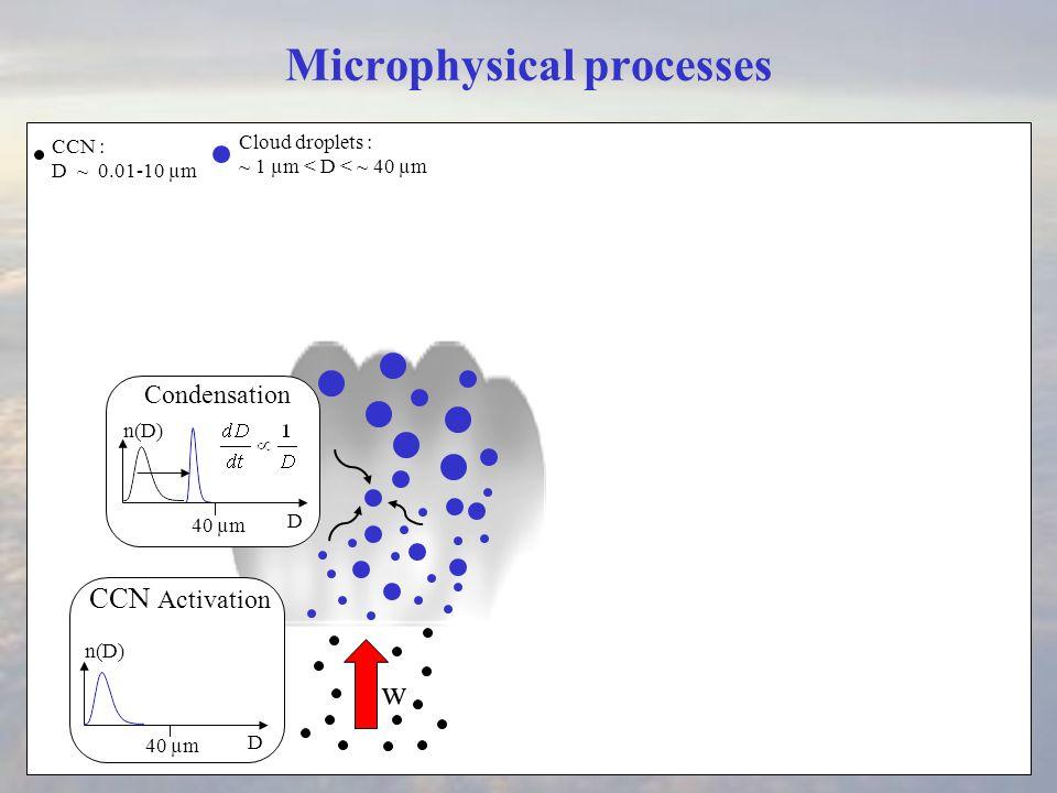 Microphysical processes Condensation w CCN : D ~ 0.01-10 µm D 40 µm D n(D) Cloud droplets : ~ 1 µm < D < ~ 40 µm CCN Activation Mixing D 40 µm n(D)