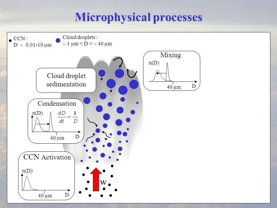 rain flux profiles N c =50, 200 cm-3 N c = 50 cm -3 N c = 200 cm -3
