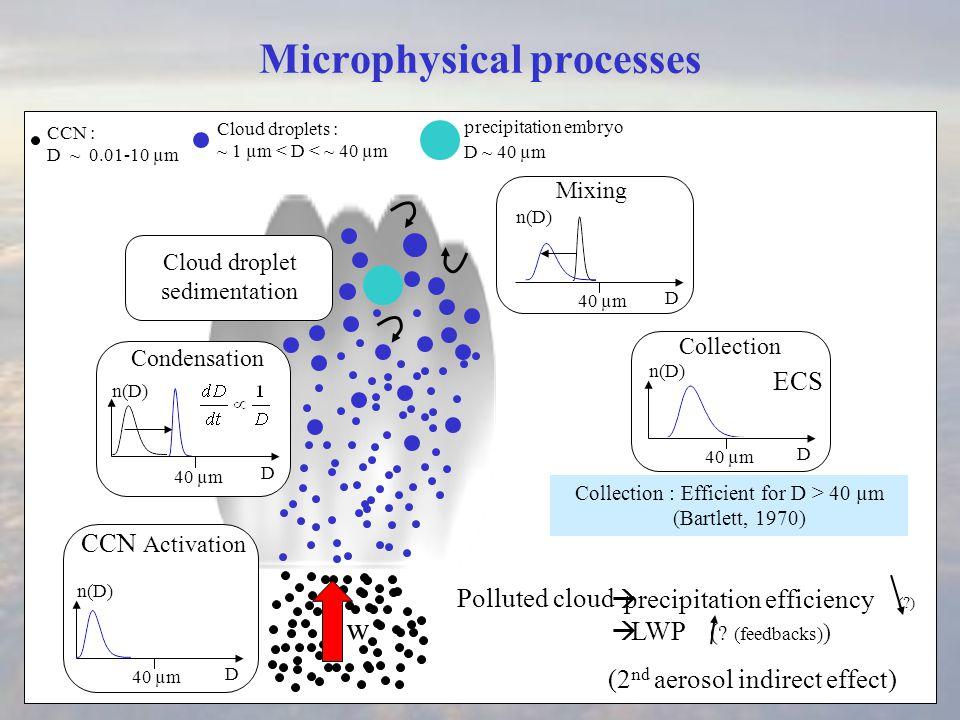 Microphysical processes Condensation w CCN : D ~ 0.01-10 µm D 40 µm D n(D) Cloud droplets : ~ 1 µm < D < ~ 40 µm CCN Activation Cloud droplet sedimentation Mixing D 40 µm n(D) Marine cloud