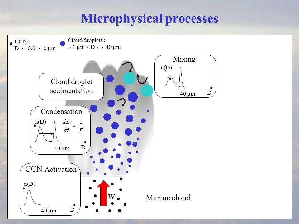 Microphysical processes Cloud droplets : ~ 1 µm < D < ~ 40 µm Condensation w precipitation embryo D ~ 40 µm Cloud droplet sedimentation CCN : D ~ 0.01-10 µm D 40 µm D n(D) Collection D 40 µm n(D) ECS CCN Activation Collection : Efficient for D > 40 µm (Bartlett, 1970) Mixing D 40 µm n(D)