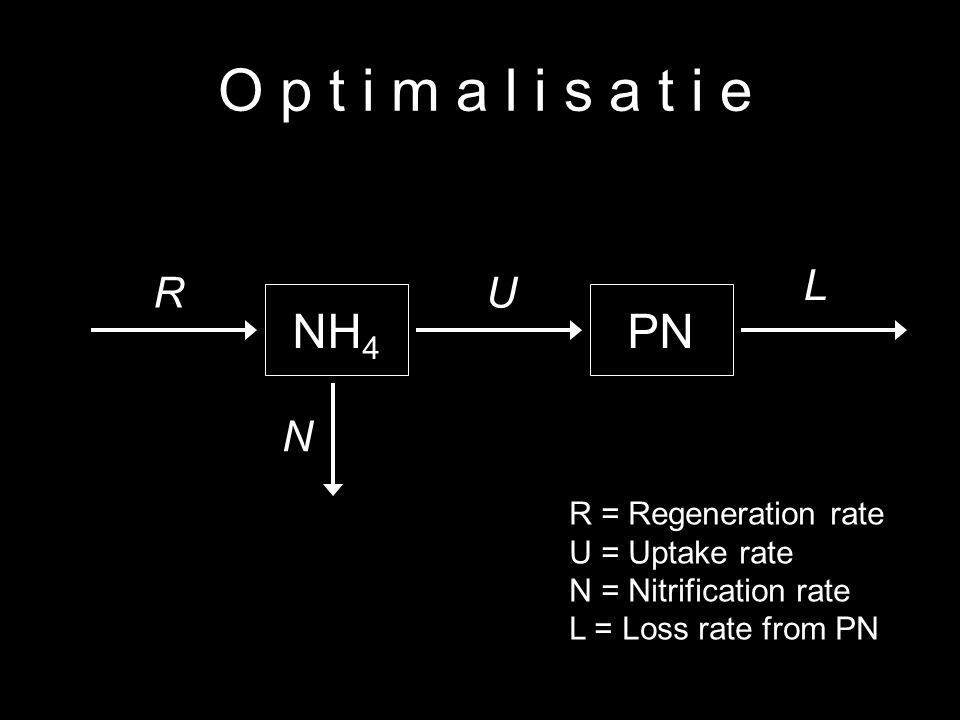 14 O p t i m a l i s a t i e NH 4 PN R N L U R = Regeneration rate U = Uptake rate N = Nitrification rate L = Loss rate from PN