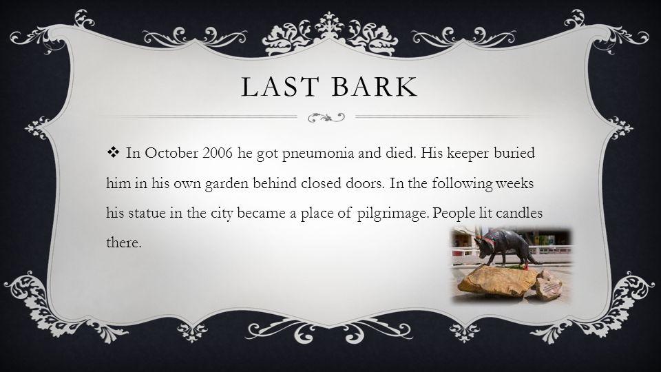 LAST BARK IIn October 2006 he got pneumonia and died.