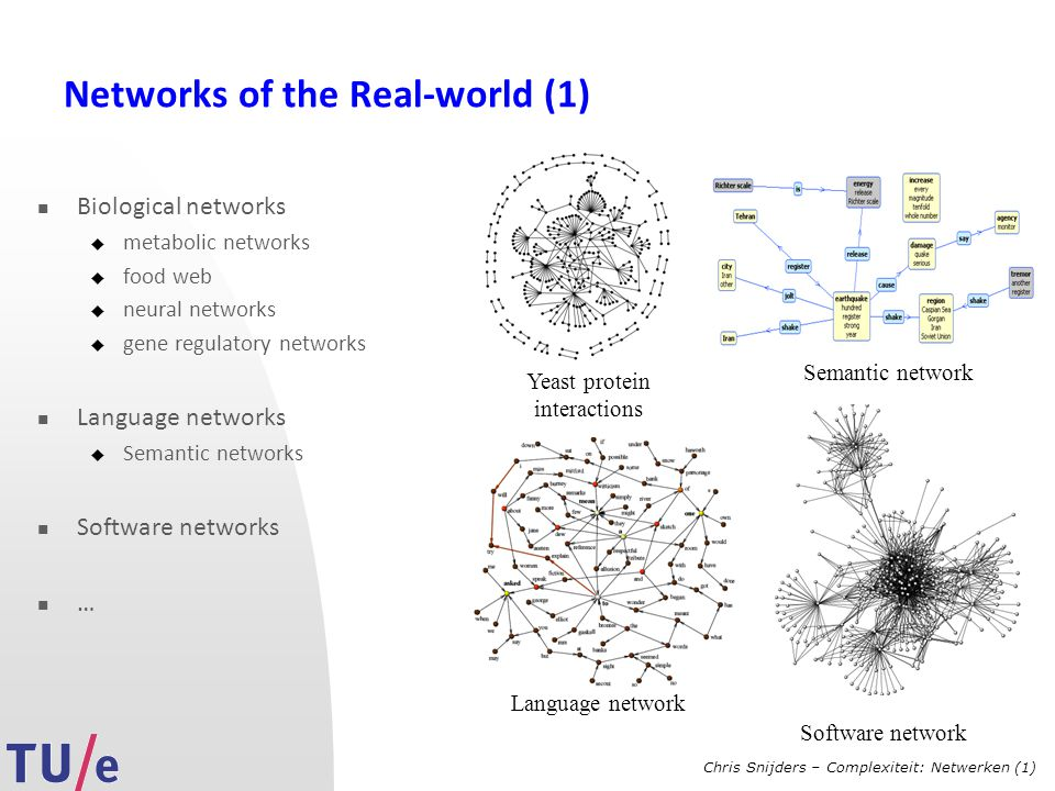 Chris Snijders – Complexiteit: Netwerken (1) Networks of the Real-world (1) Biological networks  metabolic networks  food web  neural networks  gene regulatory networks Language networks  Semantic networks Software networks … Yeast protein interactions Semantic network Language network Software network