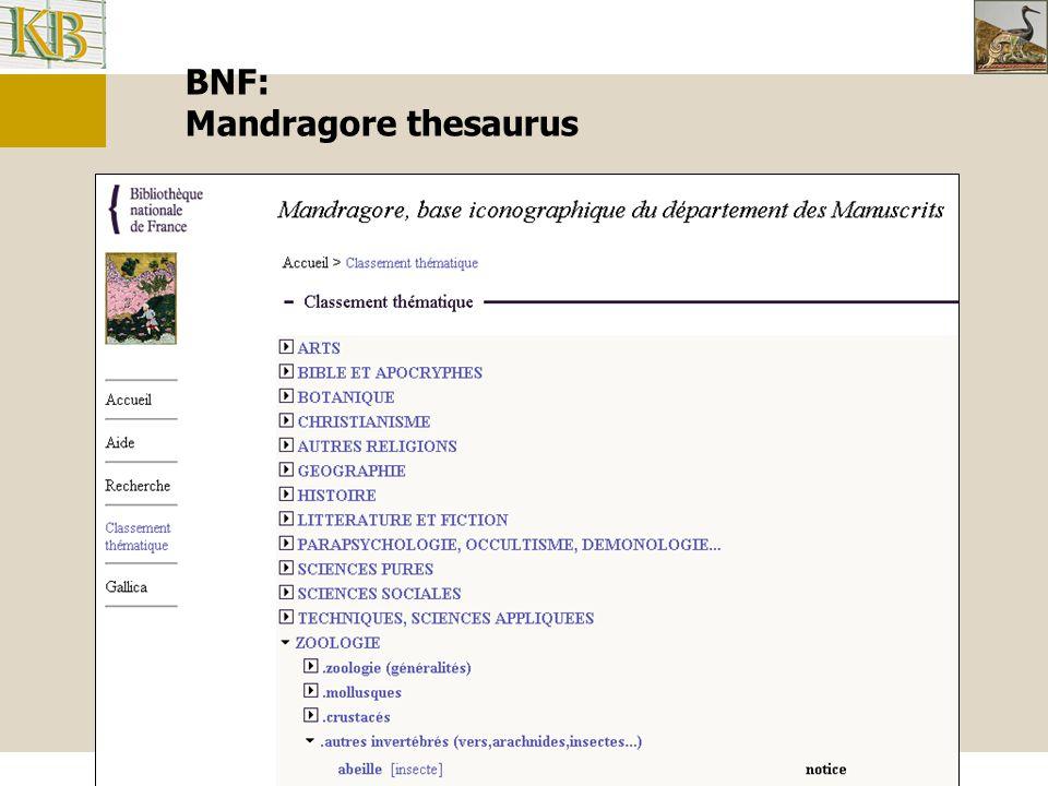 BNF: Mandragore thesaurus