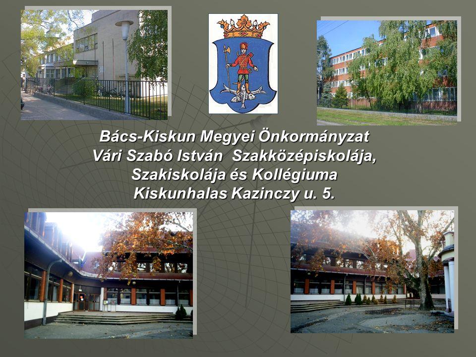 The operator of the Vári Szabó István Szakképző Iskola has been the Bács-Kiskun Megyei Önkormányzat since 1st August 2000.