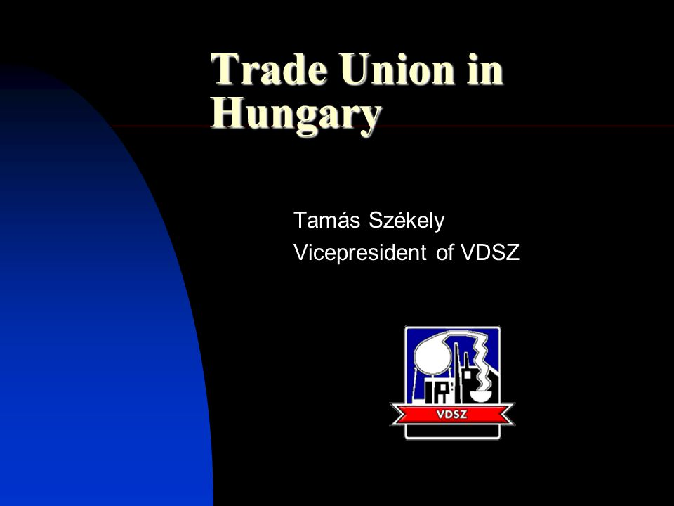 Trade Union in Hungary Tamás Székely Vicepresident of VDSZ