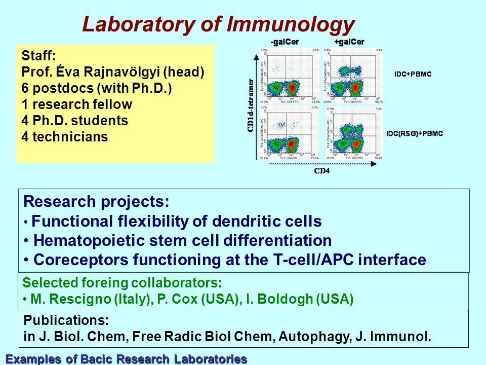 Staff: Prof. Éva Rajnavölgyi (head) 6 postdocs (with Ph.D.) 1 research fellow 4 Ph.D.
