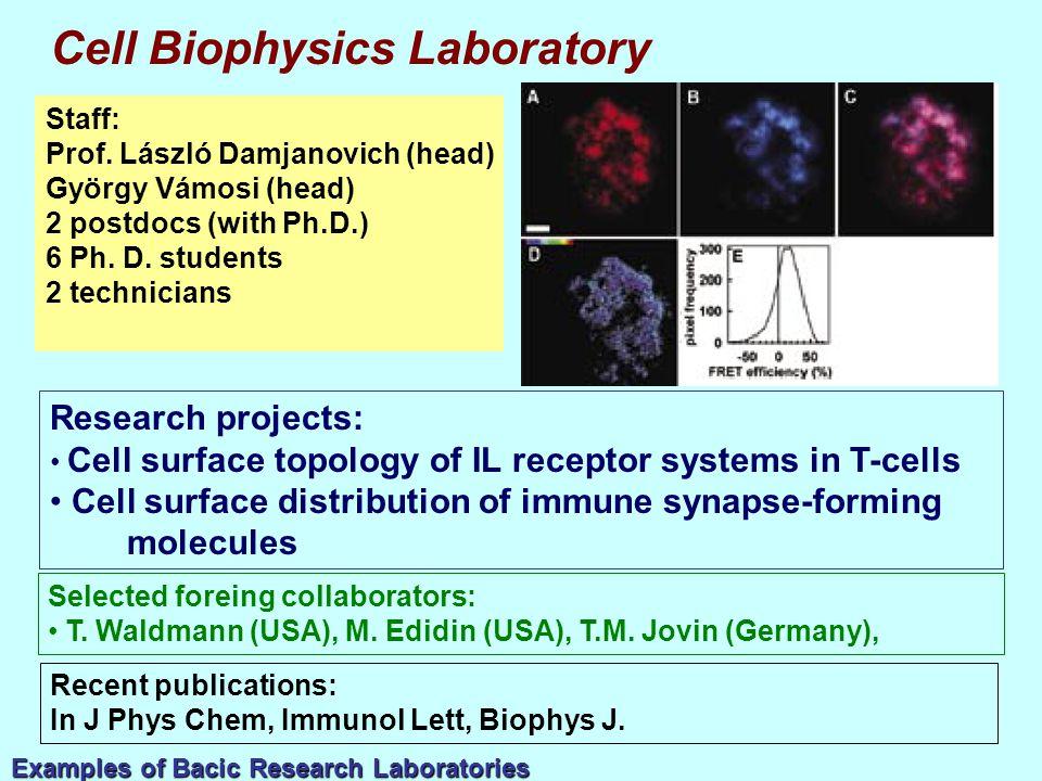 Staff: Prof. László Damjanovich (head) György Vámosi (head) 2 postdocs (with Ph.D.) 6 Ph.