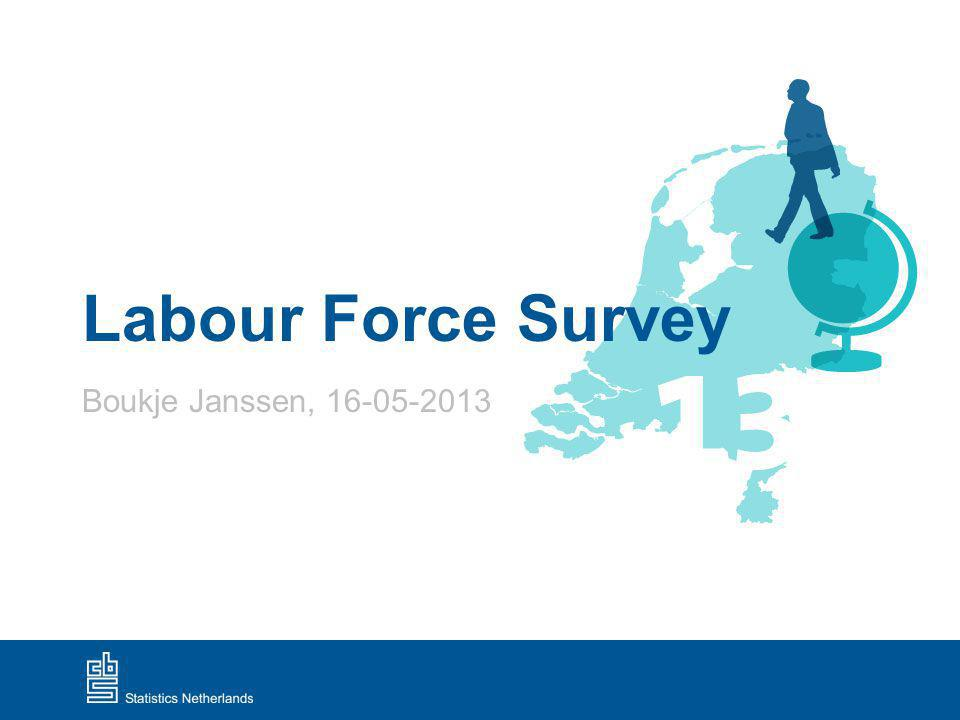 Labour Force Survey Boukje Janssen,
