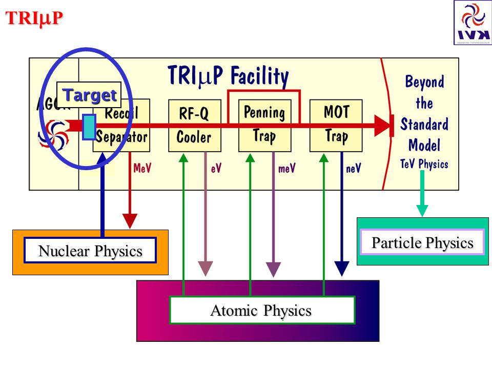 TRI  P Atomic Physics Nuclear Physics Particle Physics Target