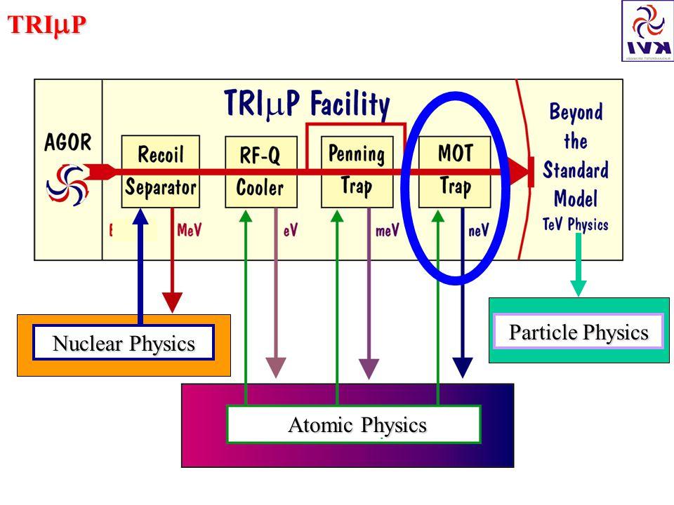 TRI  P Atomic Physics Nuclear Physics Particle Physics