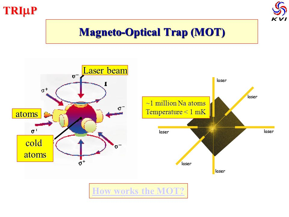 TRI  P Magneto-Optical Trap (MOT) Laser beam atoms coldatoms ~1 million Na atoms Temperature < 1 mK How works the MOT.