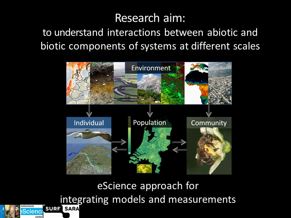 Research aim: to understand interactions between abiotic and biotic components of systems at different scales eScience approach for integrating models and measurements