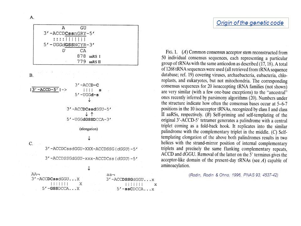 (Rodin, Rodin & Ohno, 1996, PNAS 93, 4537-42) Origin of the genetic code