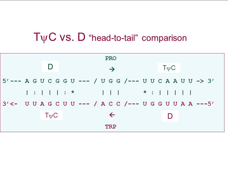 PRO  5'--- A G U C G G U --- / U G G /--- U U C A A U U -> 3' | : | | | : * | | | * : | | | | | 3'<- U U A G C U U --- / A C C /--- U G G U U A A ---5'  TRP D D TCTC TCTC T  C vs.