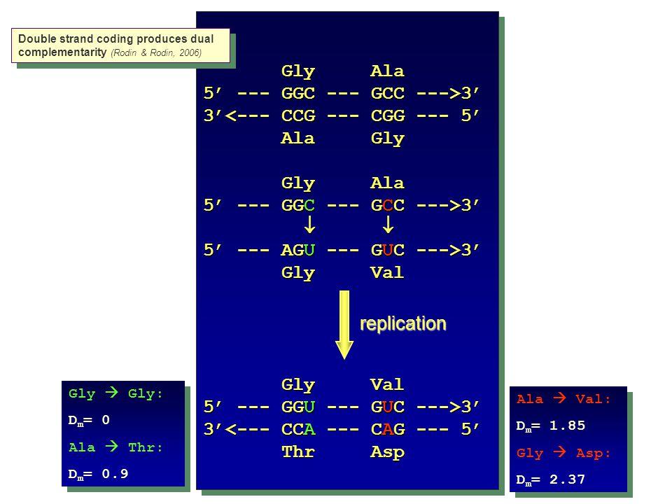 Gly Ala 5' --- GGC --- GCC --->3' 3'<--- CCG --- CGG --- 5' Ala Gly Ala Gly Gly Ala Gly Ala 5' --- GGC --- GCC --->3'     5' --- AGU --- GUC --->3' Gly Val Gly Val 5' --- GGU --- GUC --->3' 3'<--- CCA --- CAG --- 5' Thr Asp Thr Asp Gly Ala 5' --- GGC --- GCC --->3' 3'<--- CCG --- CGG --- 5' Ala Gly Ala Gly Gly Ala Gly Ala 5' --- GGC --- GCC --->3'     5' --- AGU --- GUC --->3' Gly Val Gly Val 5' --- GGU --- GUC --->3' 3'<--- CCA --- CAG --- 5' Thr Asp Thr Asp replication Double strand coding produces dual complementarity (Rodin & Rodin, 2006) Ala  Val: D m = 1.85 Gly  Asp: D m = 2.37 Ala  Val: D m = 1.85 Gly  Asp: D m = 2.37 Gly  Gly: D m = 0 Ala  Thr: D m = 0.9 Gly  Gly: D m = 0 Ala  Thr: D m = 0.9