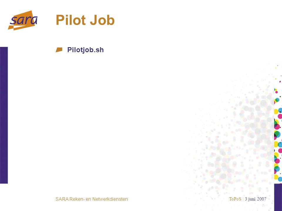 SARA Reken- en Netwerkdiensten Pilot Job Pilotjob.sh ToPoS | 3 juni 2007
