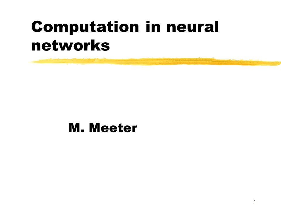 1 Computation in neural networks M. Meeter
