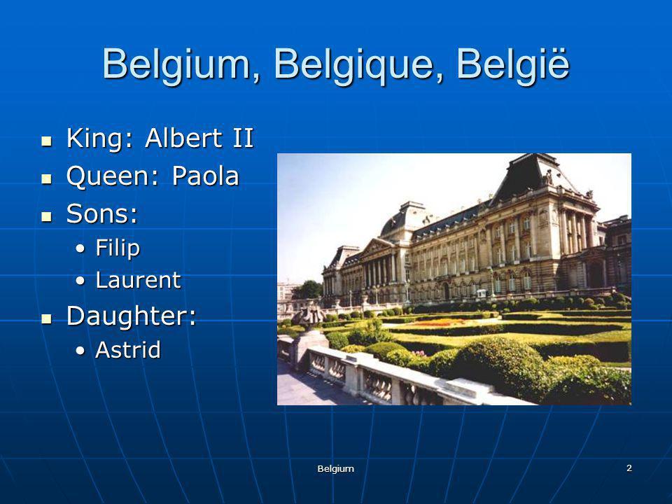 Belgium 2 Belgium, Belgique, België King: Albert II King: Albert II Queen: Paola Queen: Paola Sons: Sons: FilipFilip LaurentLaurent Daughter: Daughter