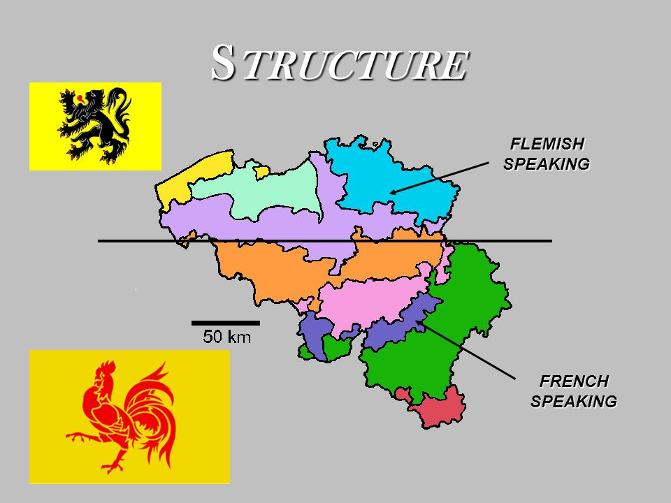 S TRUCTURE FLEMISH SPEAKING FRENCH SPEAKING