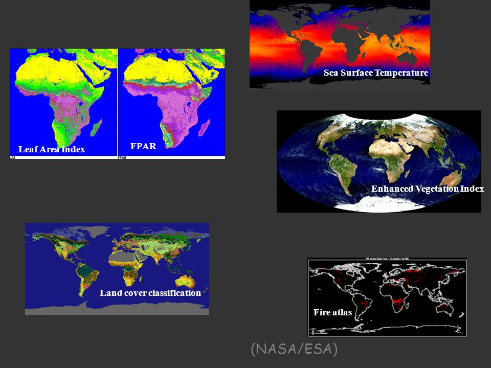 Land cover classification Sea Surface Temperature Enhanced Vegetation Index Leaf Area Index FPAR Fire atlas (NASA/ESA)