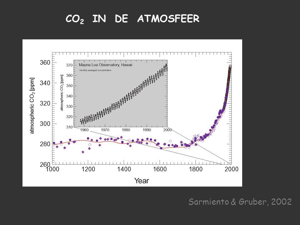 Sarmiento & Gruber, 2002 CO 2 IN DE ATMOSFEER Sarmiento & Gruber, 2002