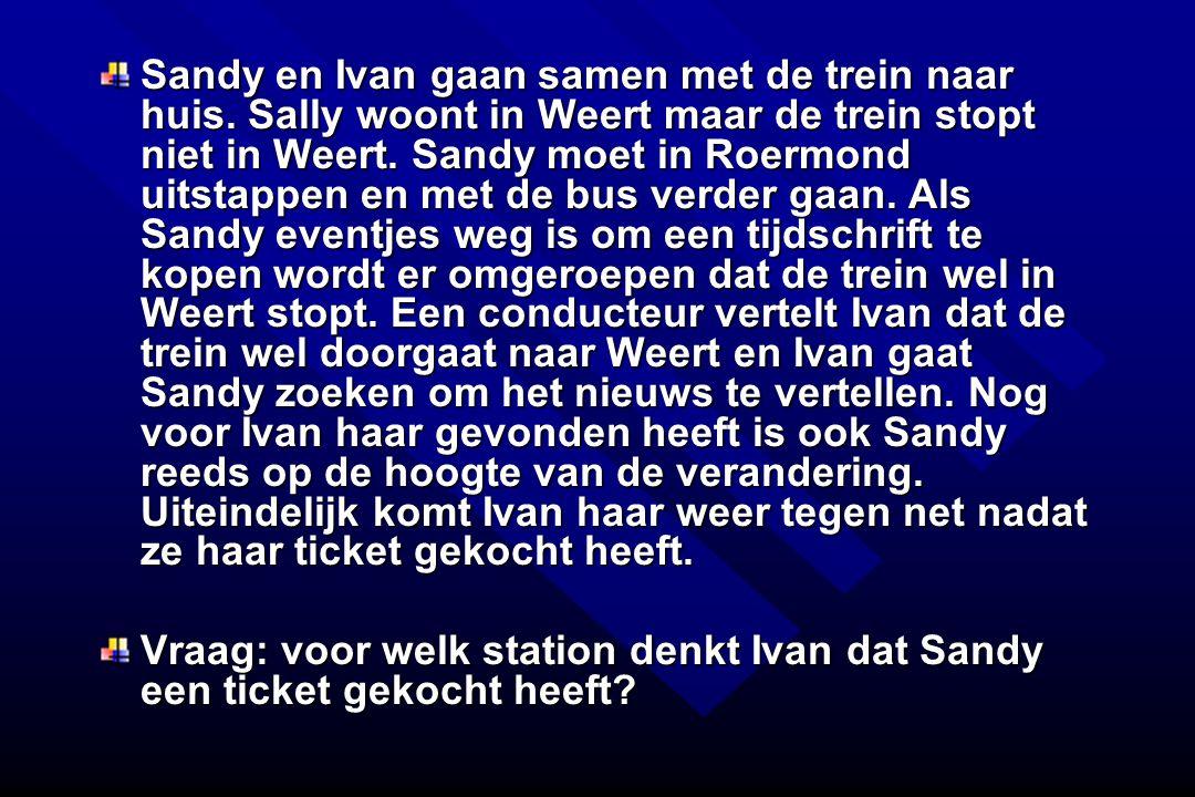 Sandy en Ivan gaan samen met de trein naar huis. Sally woont in Weert maar de trein stopt niet in Weert. Sandy moet in Roermond uitstappen en met de b