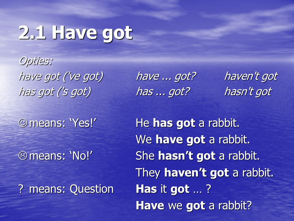 2.1 Have got Opties: have got ('ve got) have... got?haven't got has got ('s got)has... got?hasn't got means: 'Yes!'He has got a rabbit. means: 'Yes!'H