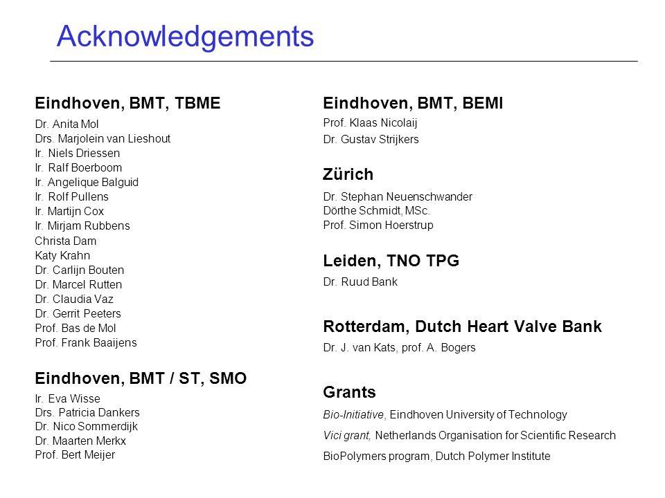 Acknowledgements Eindhoven, BMT, TBME Dr.Anita Mol Drs.