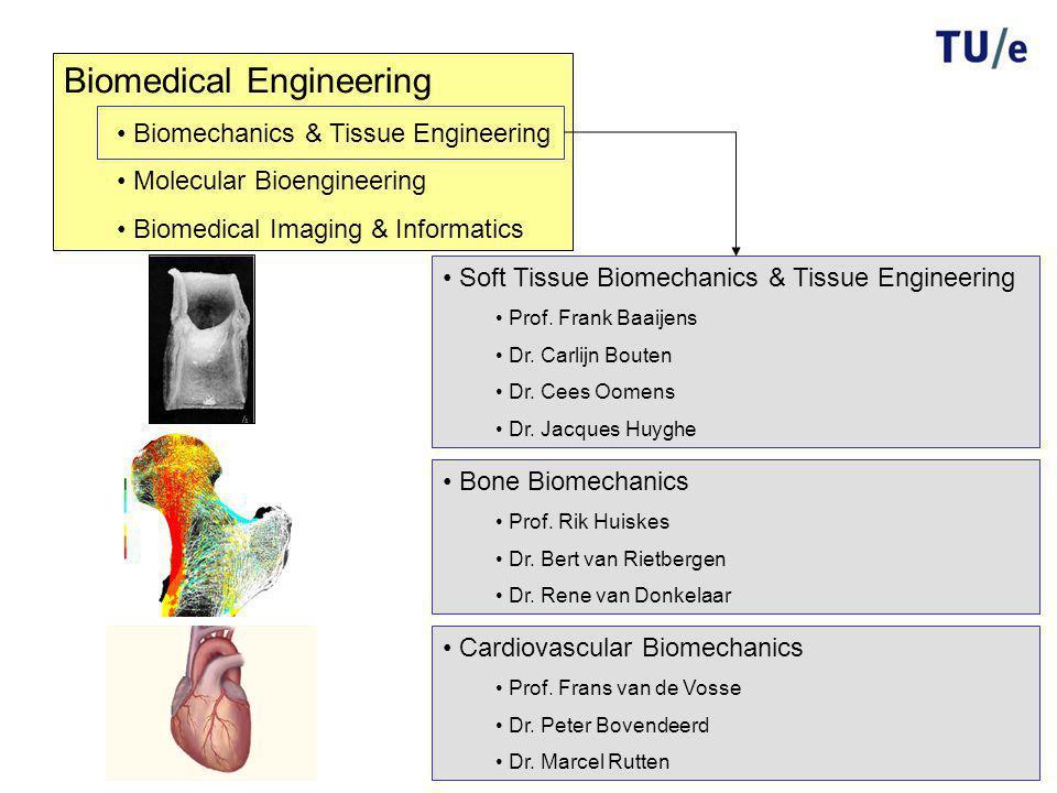 Biomedical Engineering Biomechanics & Tissue Engineering Molecular Bioengineering Biomedical Imaging & Informatics Cardiovascular Biomechanics Prof.
