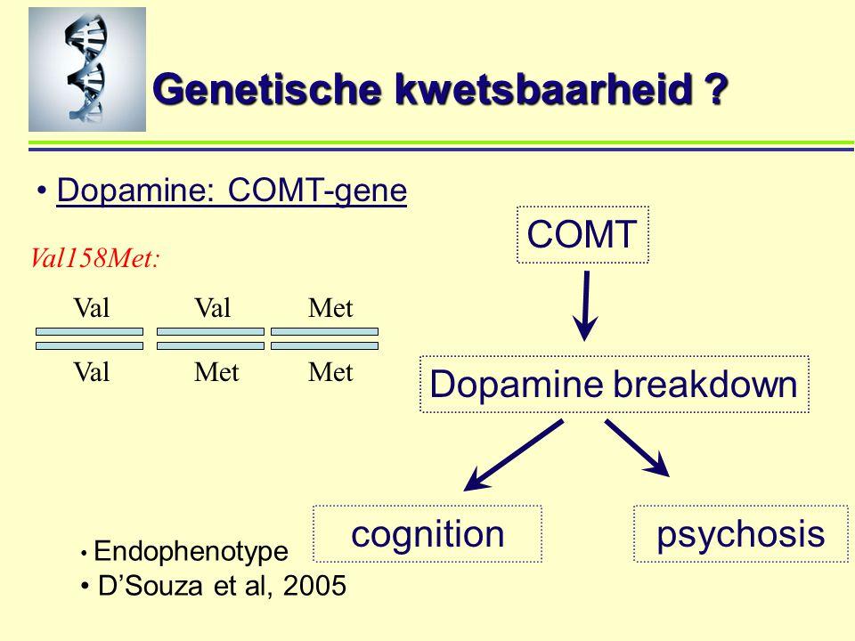Genetische kwetsbaarheid ? Dopamine: COMT-gene Dopamine breakdown psychosiscognition COMT Endophenotype D'Souza et al, 2005 Val Met Val158Met: