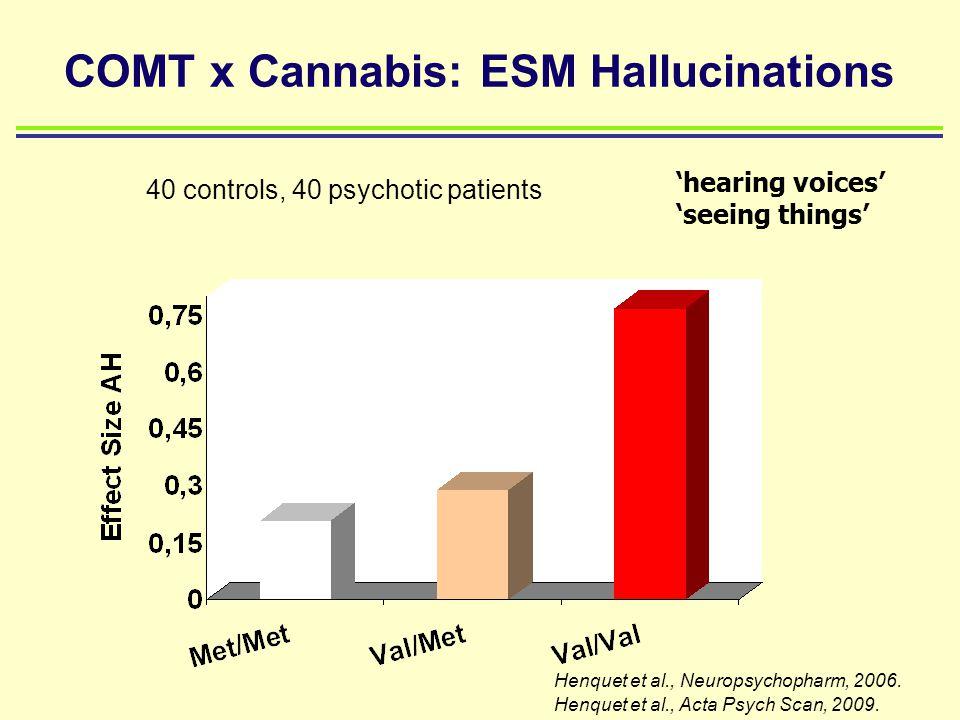 COMT x Cannabis: ESM Hallucinations 'hearing voices' 'seeing things' Henquet et al., Neuropsychopharm, 2006. Henquet et al., Acta Psych Scan, 2009. 40