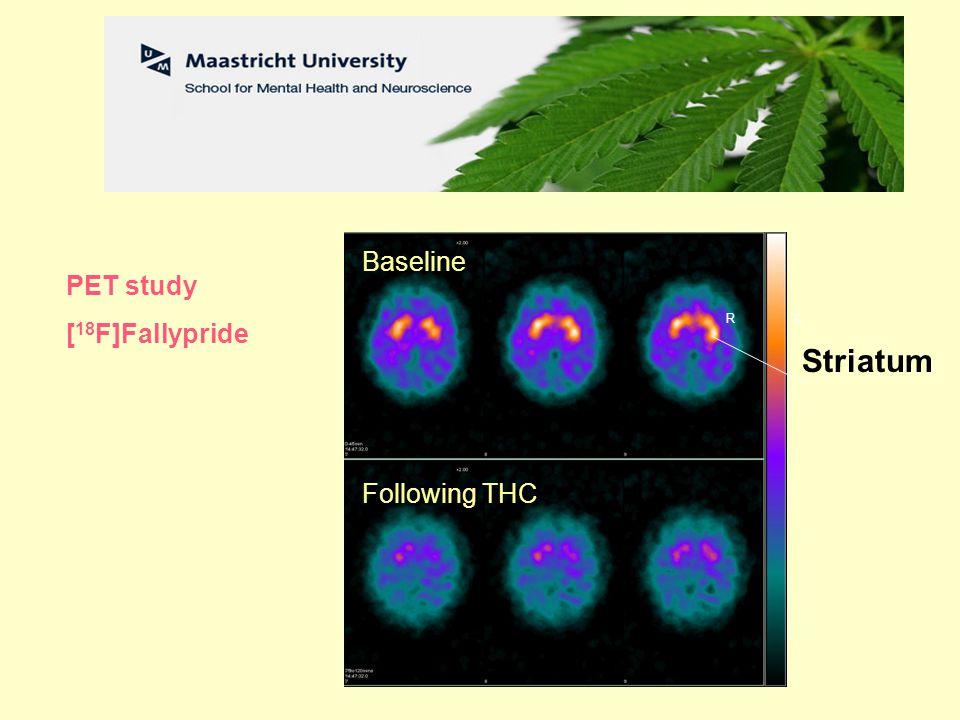 L R Striatum Baseline Following THC PET study [ 18 F]Fallypride Baseline