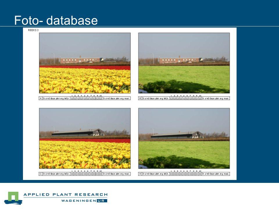 Foto- database