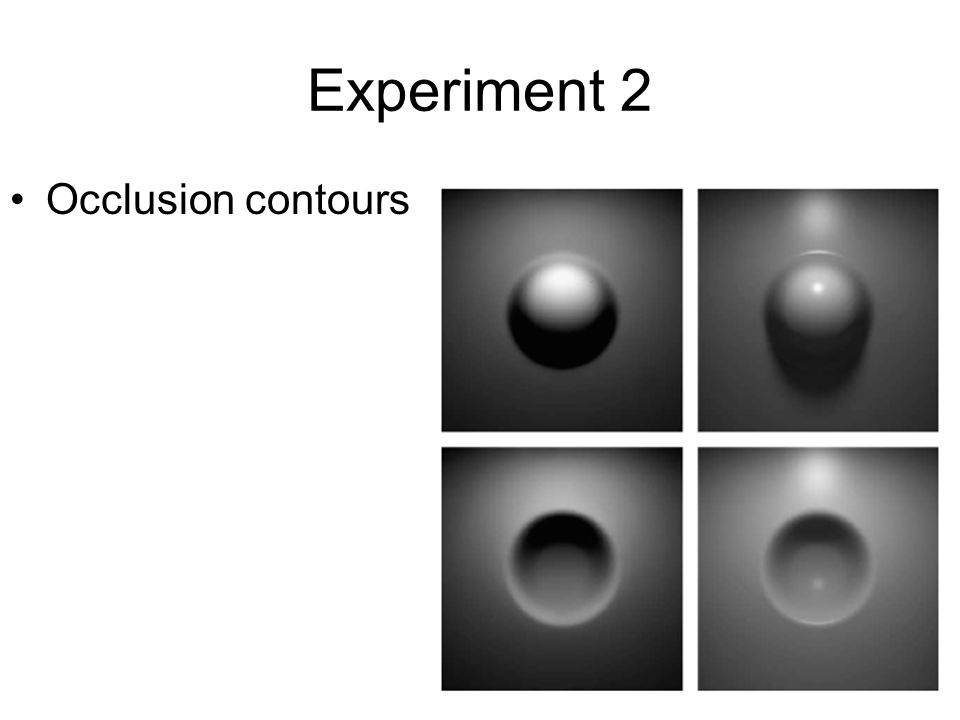 Experiment 2 Occlusion contours