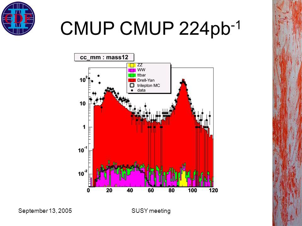 September 13, 2005SUSY meeting CMUP CMUP 224pb -1