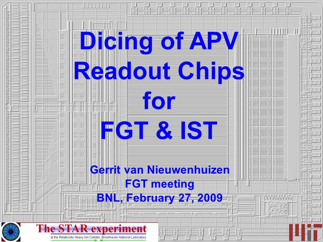 Dicing of APV Readout Chips for FGT & IST Gerrit van Nieuwenhuizen FGT meeting BNL, February 27, 2009