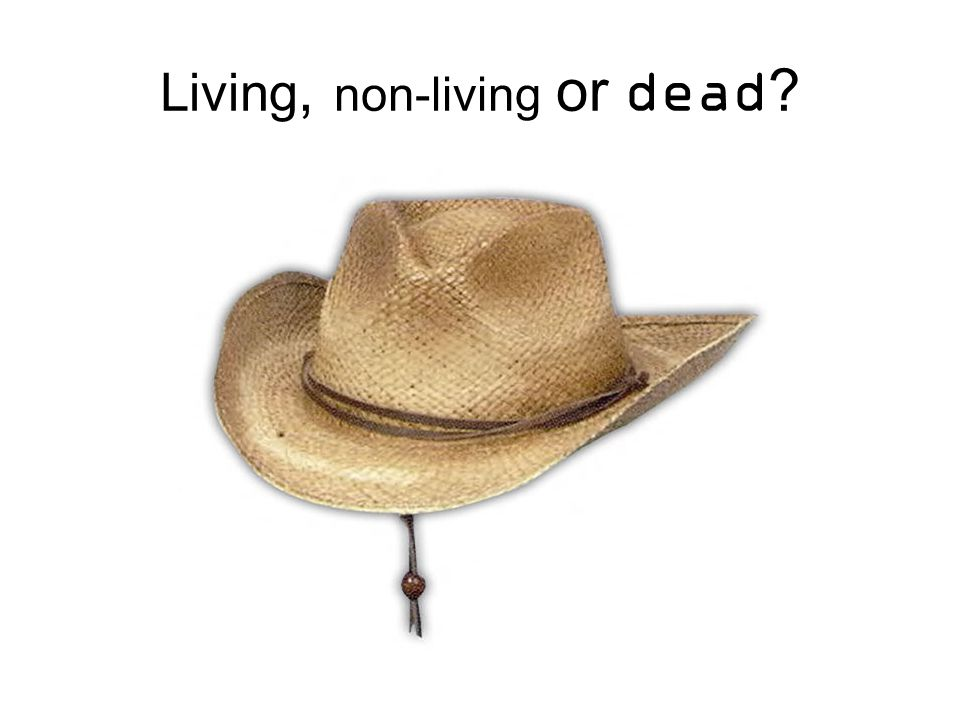 Living, non-living or dead