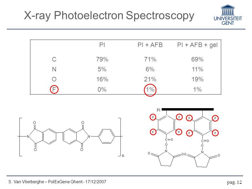 X-ray Photoelectron Spectroscopy S. Van Vlierberghe – PolExGene Ghent - 17/12/2007 pag.