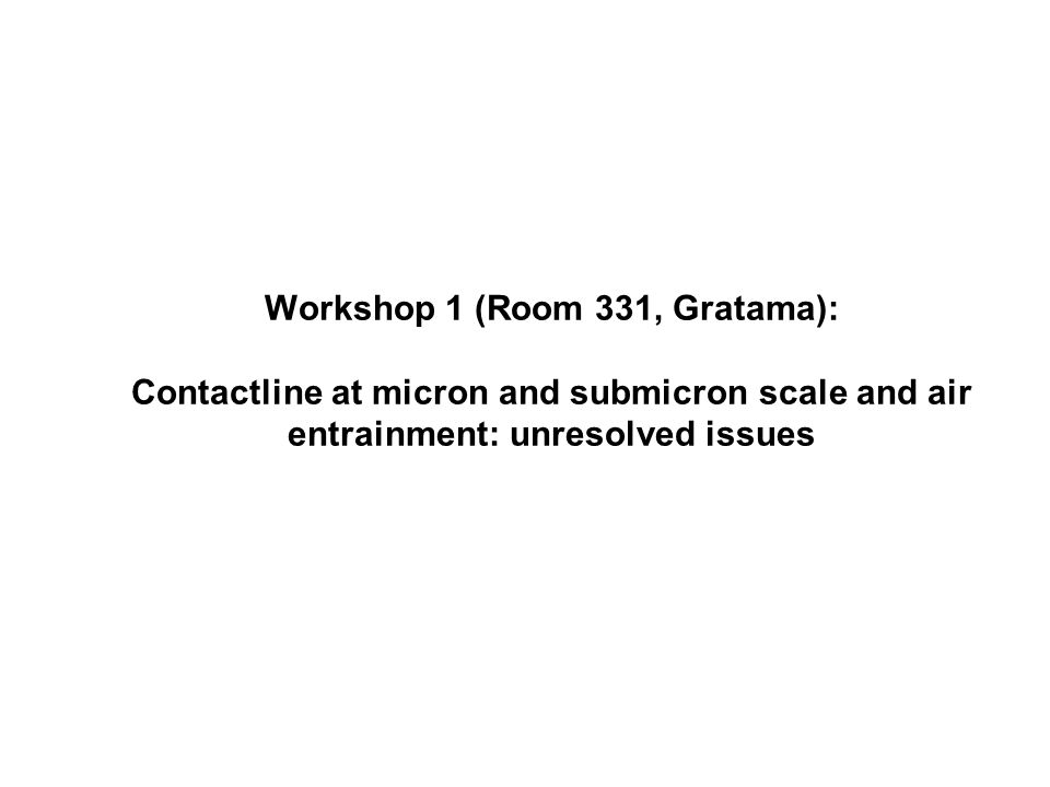 Workshop 1 (Room 331, Gratama): Contactline at micron and submicron scale and air entrainment: unresolved issues