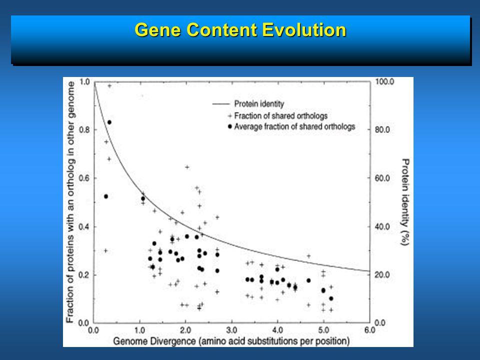 Gene Content Evolution