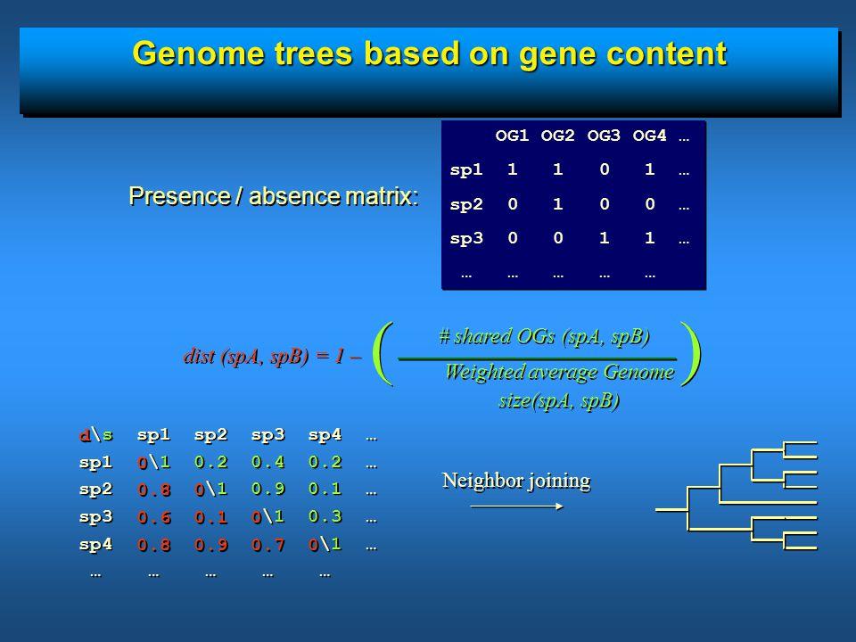 Genome trees based on gene content ( ) # shared OGs (spA, spB) Weighted average Genome size(spA, spB) Weighted average Genome size(spA, spB) \s sp1 sp2 sp3 sp4 … sp1 \1 0.2 0.4 0.2 … sp2 \1 0.9 0.1 … sp3 \1 0.3 … sp4 \1 … … … … … … \s sp1 sp2 sp3 sp4 … sp1 \1 0.2 0.4 0.2 … sp2 \1 0.9 0.1 … sp3 \1 0.3 … sp4 \1 … … … … … … Neighbor joining d 0 0.8 0 0.6 0.1 0 0.8 0.9 0.7 0 d 0 0.8 0 0.6 0.1 0 0.8 0.9 0.7 0 dist (spA, spB) = 1 – OG1 OG2 OG3 OG4 … sp1 1 1 0 1 … sp2 0 1 0 0 … sp3 0 0 1 1 … … … … … … OG1 OG2 OG3 OG4 … sp1 1 1 0 1 … sp2 0 1 0 0 … sp3 0 0 1 1 … … … … … … Presence / absence matrix: