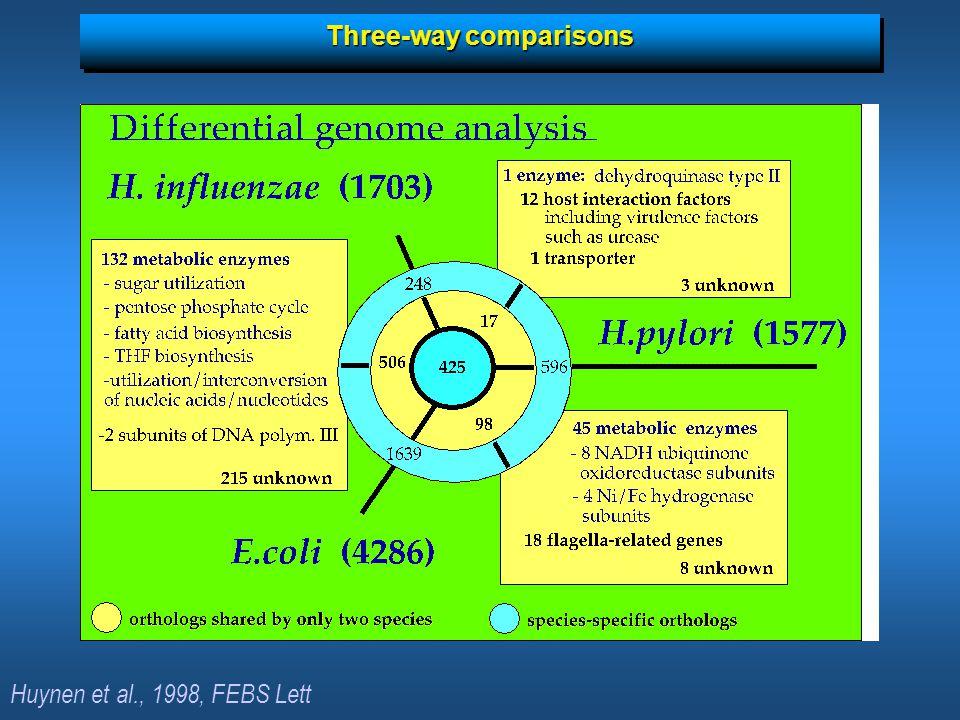Three-way comparisons Huynen et al., 1998, FEBS Lett