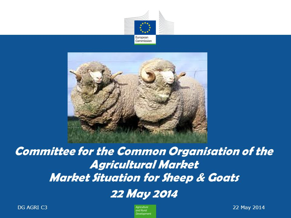 Committee for the Common Organisation of the Agricultural Market Market Situation for Sheep & Goats 22 May 2014 DG AGRI C3 22 May 2014