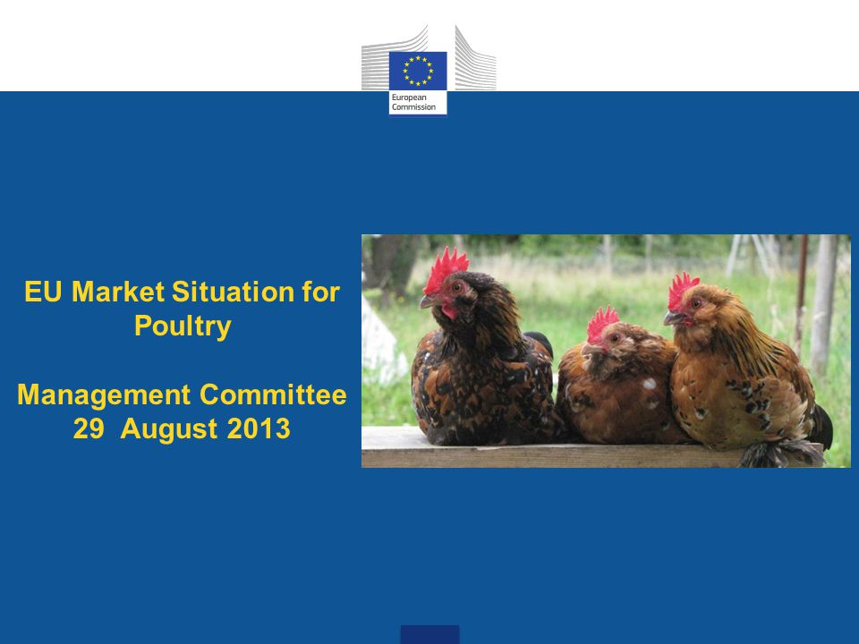 EU Market Situation for Poultry Management Committee 29 August 2013