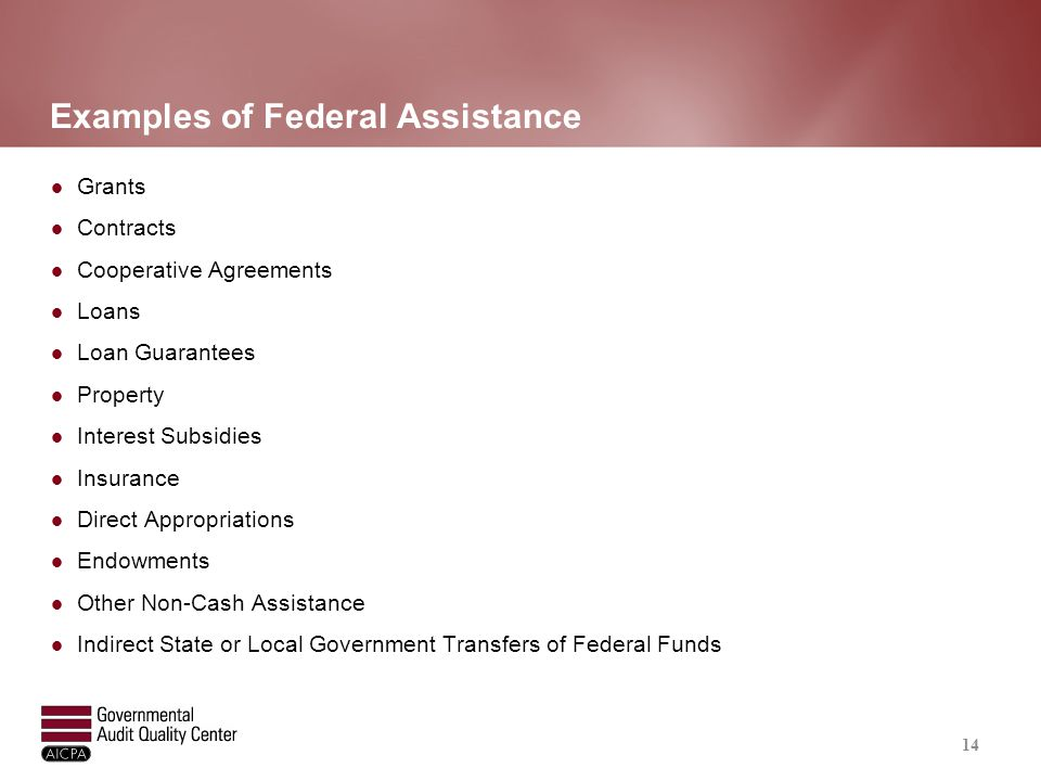 Examples of Federal Assistance Grants Contracts Cooperative Agreements Loans Loan Guarantees Property Interest Subsidies Insurance Direct Appropriatio