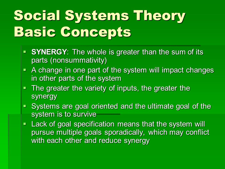 The social work agency: A systems analysis  What feedback loops are present in the agency.